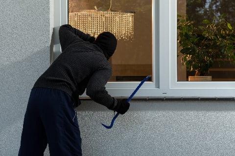 Do burglars come back?
